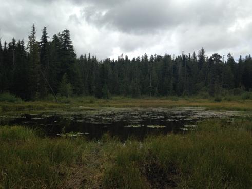 Enid Lake